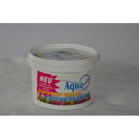 Aqua+++