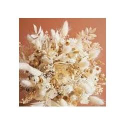Trockenblumenstrauß 16